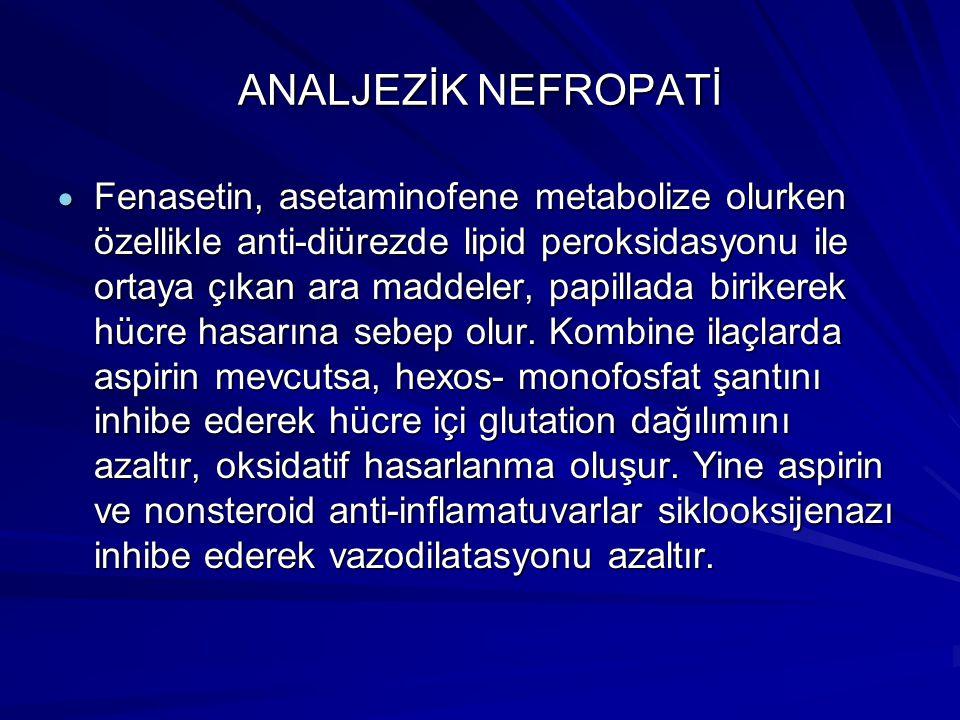 ANALJEZİK NEFROPATİ  Fenasetin, asetaminofene metabolize olurken özellikle anti-diürezde lipid peroksidasyonu ile ortaya çıkan ara maddeler, papillada birikerek hücre hasarına sebep olur.