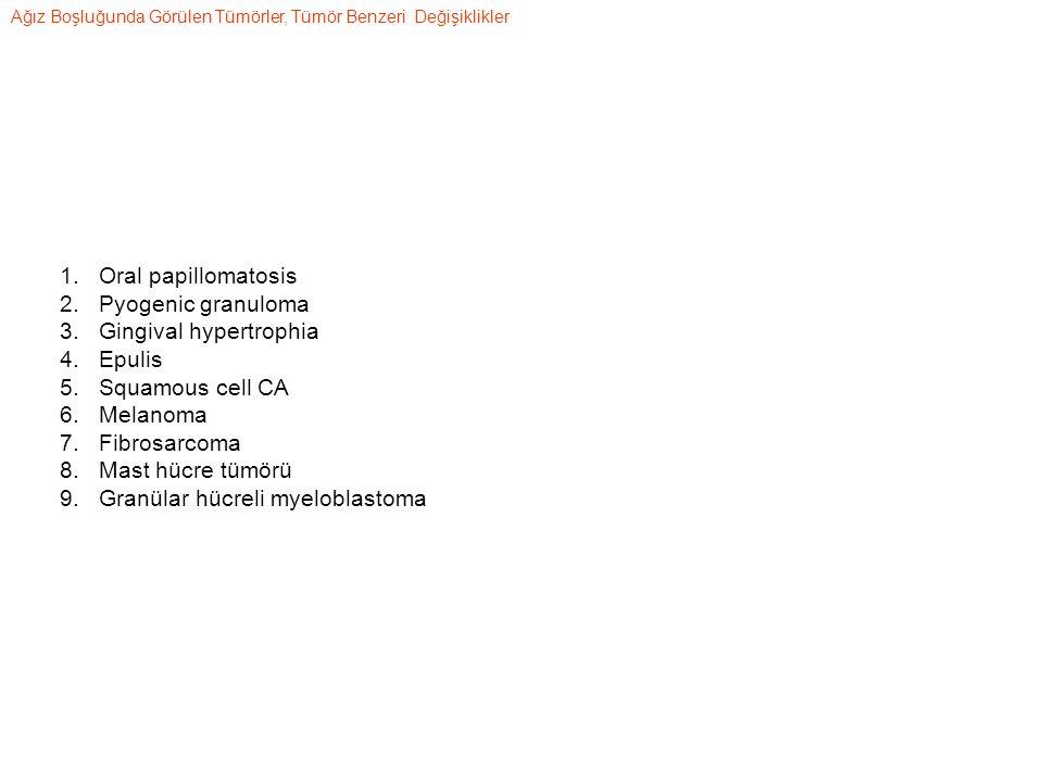 1.Oral papillomatosis 2.Pyogenic granuloma 3.Gingival hypertrophia 4.Epulis 5.Squamous cell CA 6.Melanoma 7.Fibrosarcoma 8.Mast hücre tümörü 9.Granülar hücreli myeloblastoma