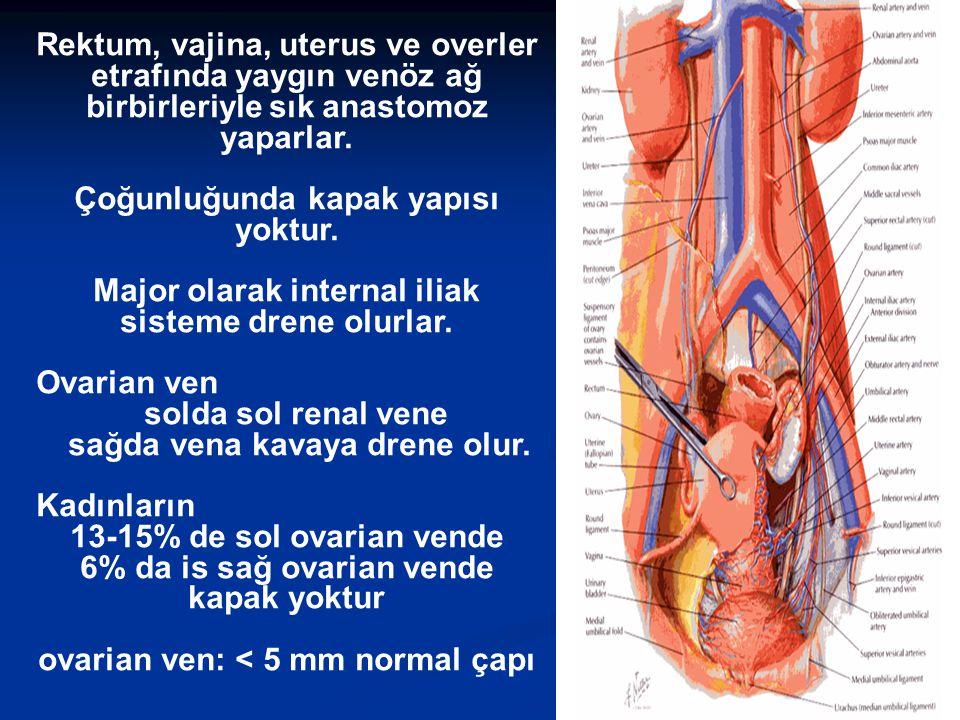 Rektum, vajina, uterus ve overler etrafında yaygın venöz ağ birbirleriyle sık anastomoz yaparlar. Çoğunluğunda kapak yapısı yoktur. Major olarak inter