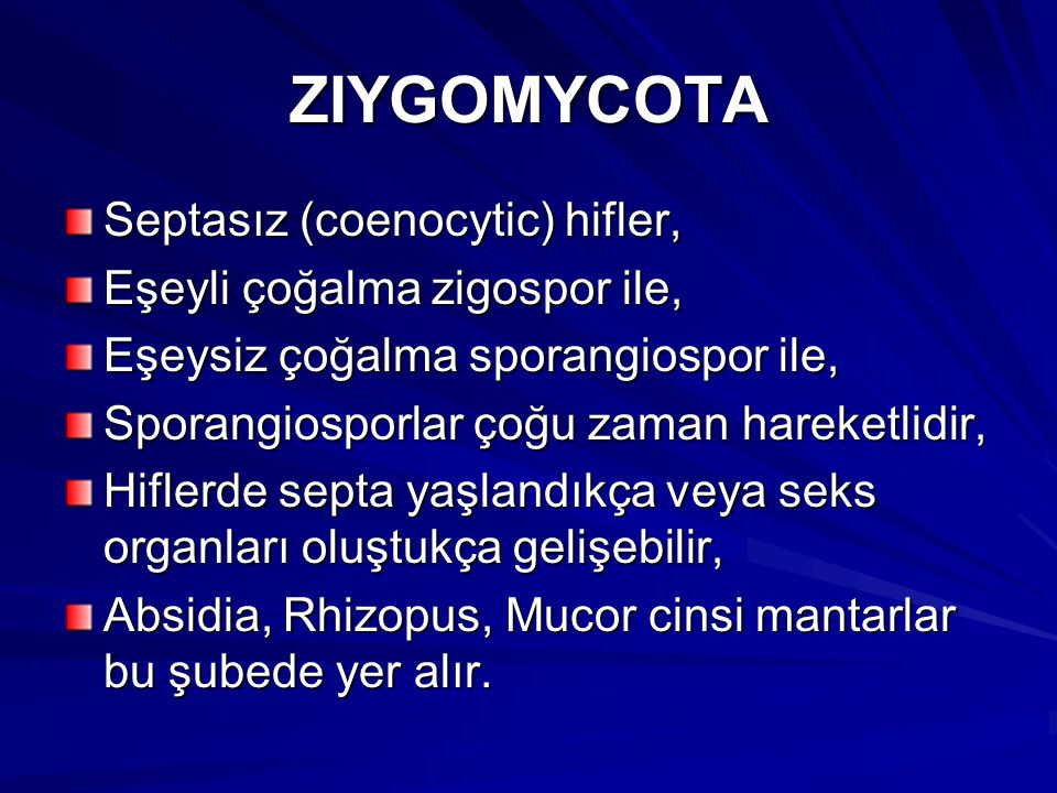 ZIYGOMYCOTA Septasız (coenocytic) hifler, Eşeyli çoğalma zigospor ile, Eşeysiz çoğalma sporangiospor ile, Sporangiosporlar çoğu zaman hareketlidir, Hi