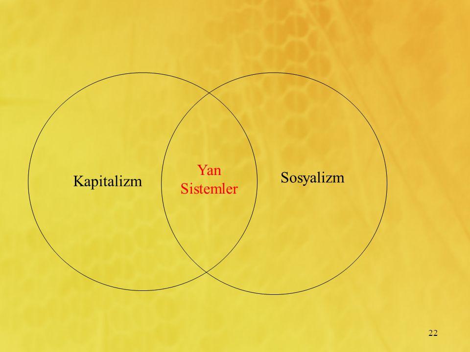 22 Kapitalizm Yan Sistemler Sosyalizm