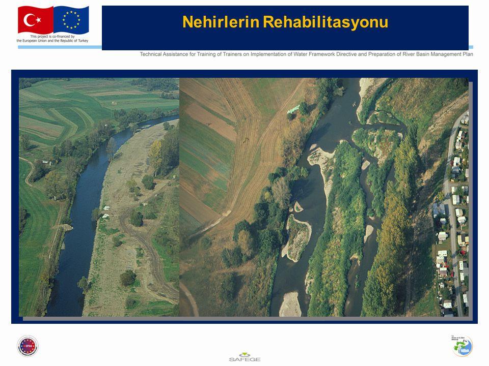 Nehirlerin Rehabilitasyonu