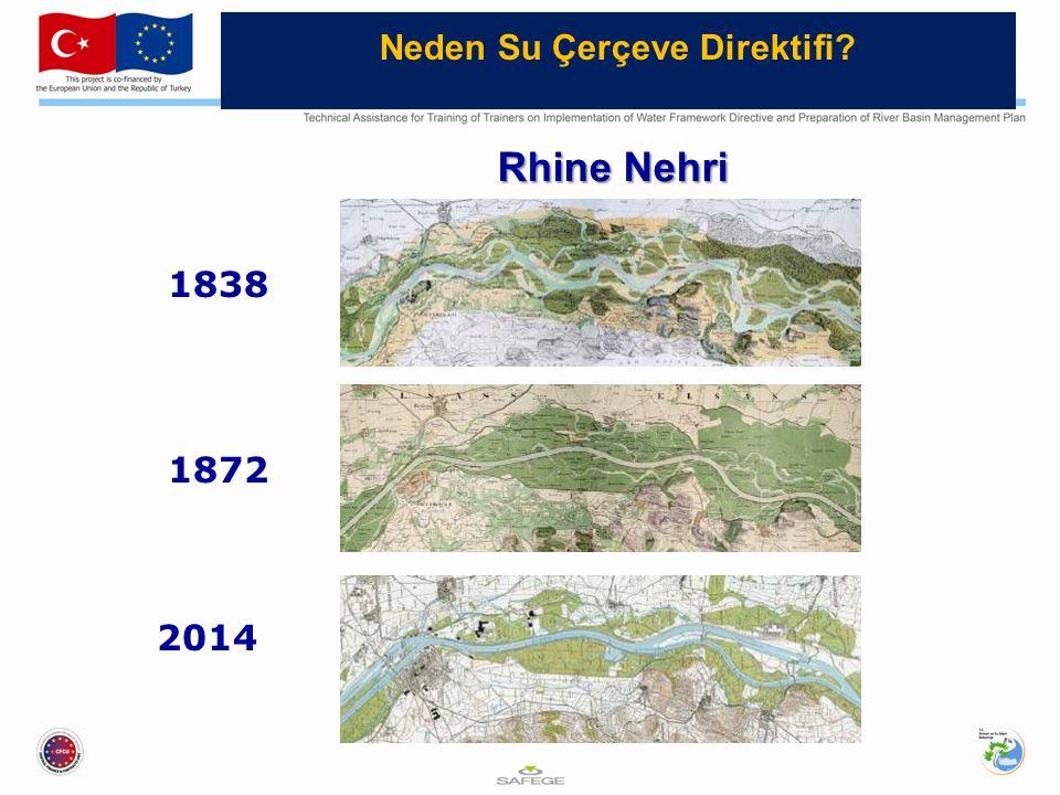 1838 1872 2014 Rhine Nehri Neden Su Çerçeve Direktifi?