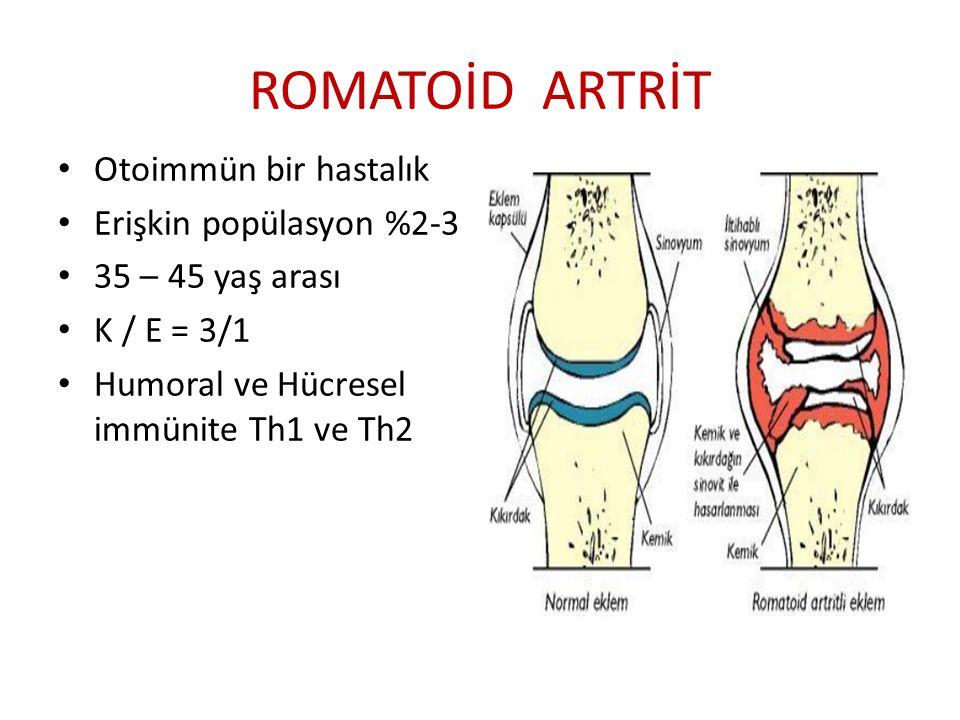 ROMATOİD ARTRİT Otoimmün bir hastalık Erişkin popülasyon %2-3 35 – 45 yaş arası K / E = 3/1 Humoral ve Hücresel immünite Th1 ve Th2