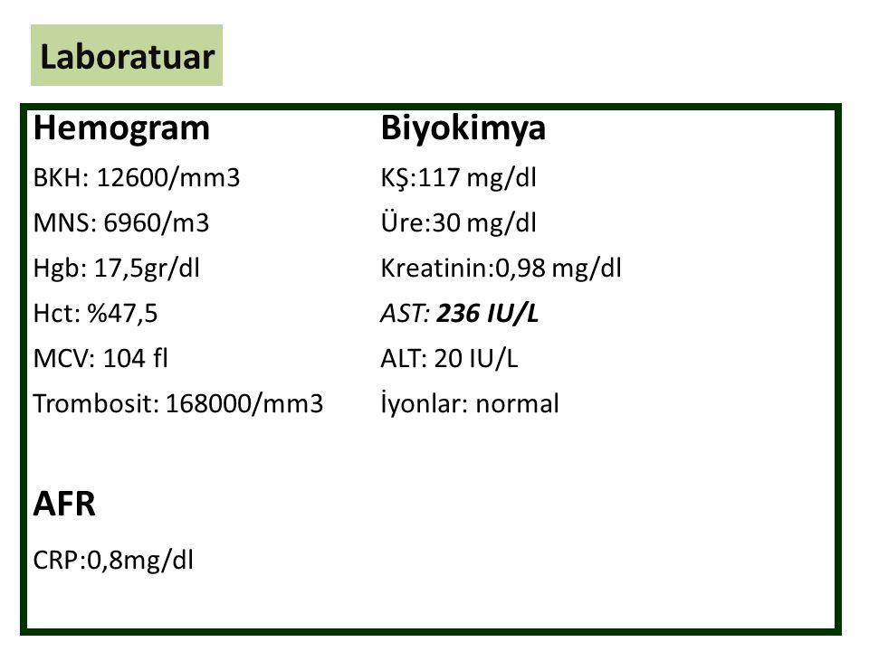 Laboratuar HemogramBiyokimya BKH: 12600/mm3KŞ:117 mg/dl MNS: 6960/m3Üre:30 mg/dl Hgb: 17,5gr/dlKreatinin:0,98 mg/dl Hct: %47,5AST: 236 IU/L MCV: 104 f