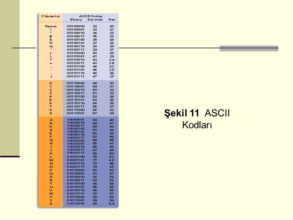 Şekil 11 ASCII Kodları