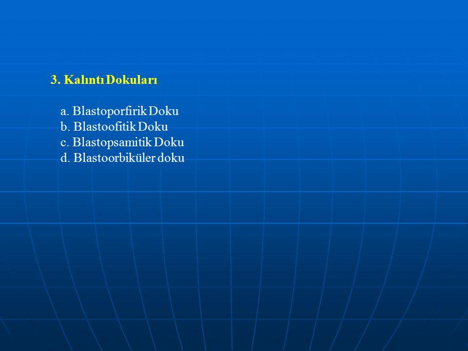 3.Kalıntı Dokuları a. Blastoporfirik Doku b. Blastoofitik Doku c.