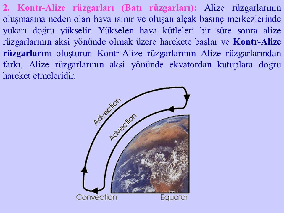2. Kontr-Alize rüzgarları (Batı rüzgarları): Alize rüzgarlarının oluşmasına neden olan hava ısınır ve oluşan alçak basınç merkezlerinde yukarı doğru y