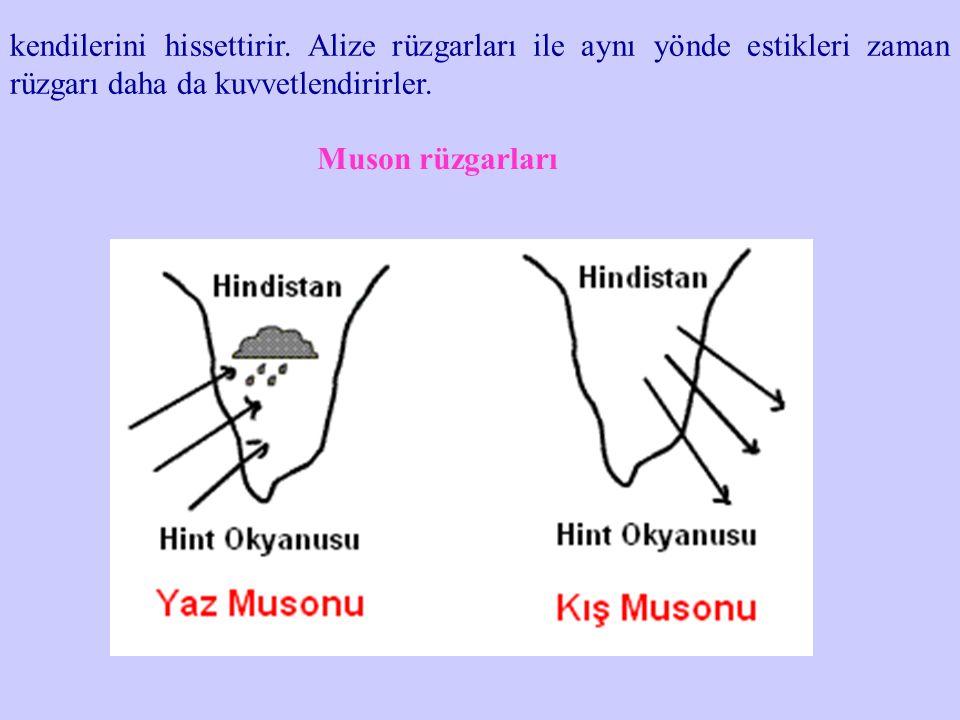 kendilerini hissettirir. Alize rüzgarları ile aynı yönde estikleri zaman rüzgarı daha da kuvvetlendirirler. Muson rüzgarları