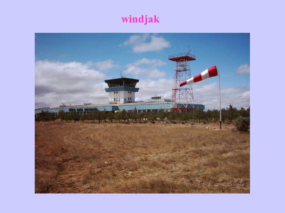 Rüzgarların Zararları 1.Rüzgarın mekanik etkisiyle dallar kırılıp ürün hasara uğrayabilir.