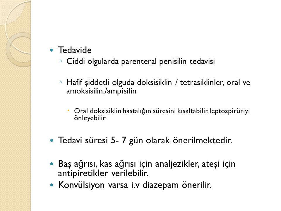 Tedavide ◦ Ciddi olgularda parenteral penisilin tedavisi ◦ Hafif şiddetli olguda doksisiklin / tetrasiklinler, oral ve amoksisilin,/ampisilin  Oral d