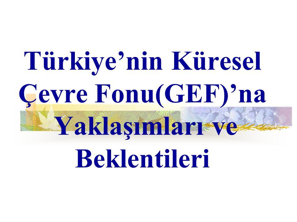 Türkiye'nin Küresel Çevre Fonu(GEF)'na Yaklaşımları ve Beklentileri