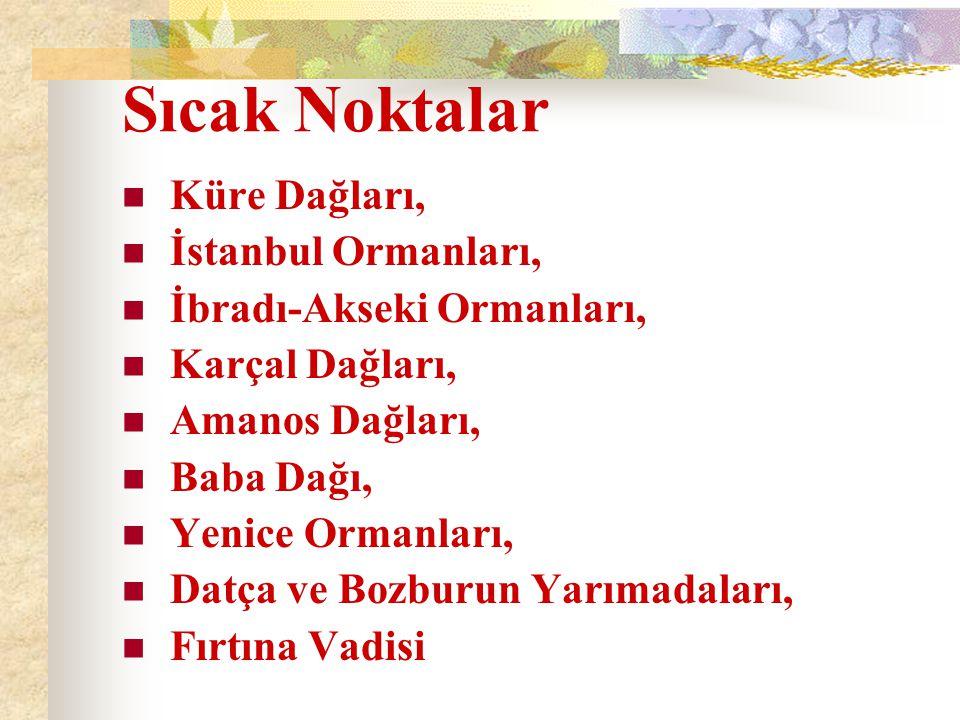 Sıcak Noktalar Küre Dağları, İstanbul Ormanları, İbradı-Akseki Ormanları, Karçal Dağları, Amanos Dağları, Baba Dağı, Yenice Ormanları, Datça ve Bozburun Yarımadaları, Fırtına Vadisi