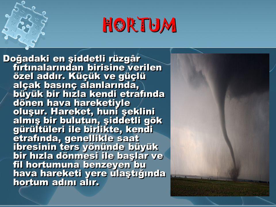 TSUNAM İ Deniz kıyısında hissedilen depremden sonra Tsunami olma olasılığı her zaman vardır.