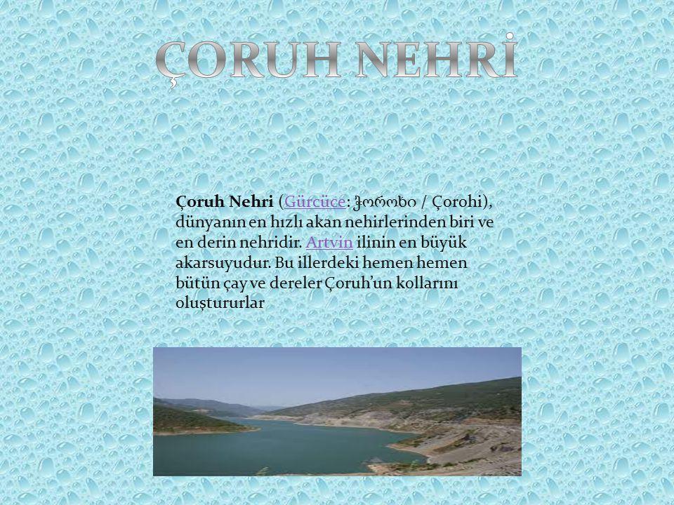 Çoruh Nehri (Gürcüce: ჭოროხი / Çorohi), dünyanın en hızlı akan nehirlerinden biri ve en derin nehridir.