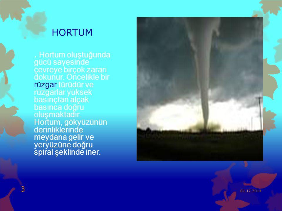 HORTUM. Hortum oluştuğunda gücü sayesinde çevreye birçok zararı dokunur. Öncelikle bir rüzgar türüdür ve rüzgarlar yüksek basınçtan alçak basınca doğr