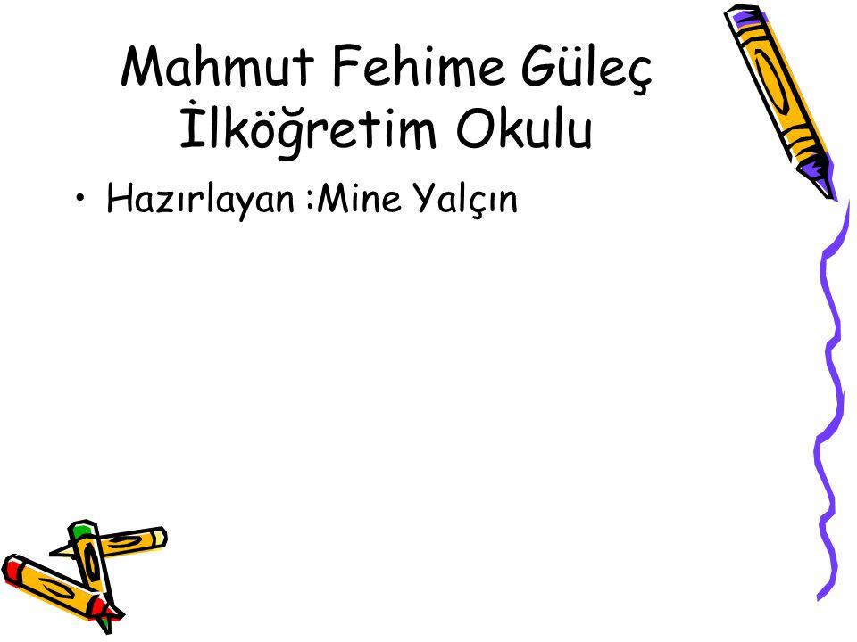 Mahmut Fehime Güleç İlköğretim Okulu Hazırlayan :Mine Yalçın