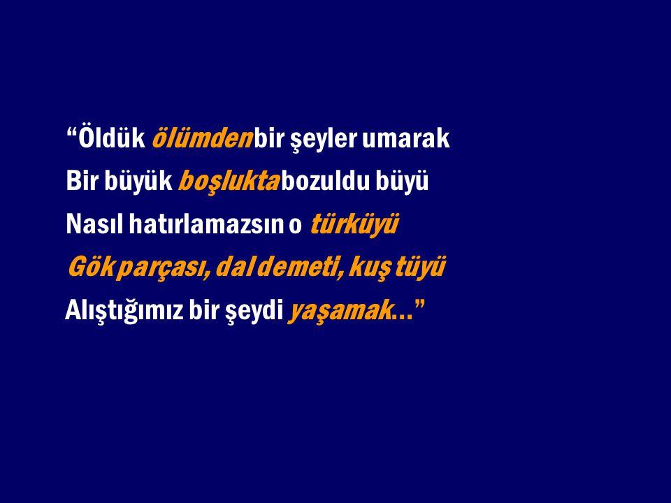 Kitap, dergi ve gazete isimleri: Deyimler Sözlüğü, Papatya Dergisi, Hayat Gazetesi...