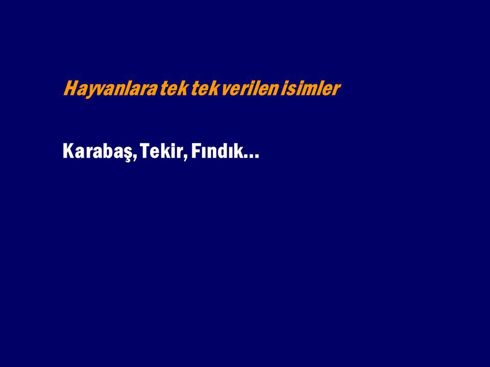 Yer ve Yerleşim Adları Isparta, Denizli, Yukarı Gökdere Köyü...