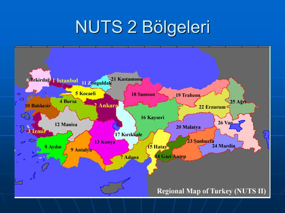 NUTS 2 Bölgeleri