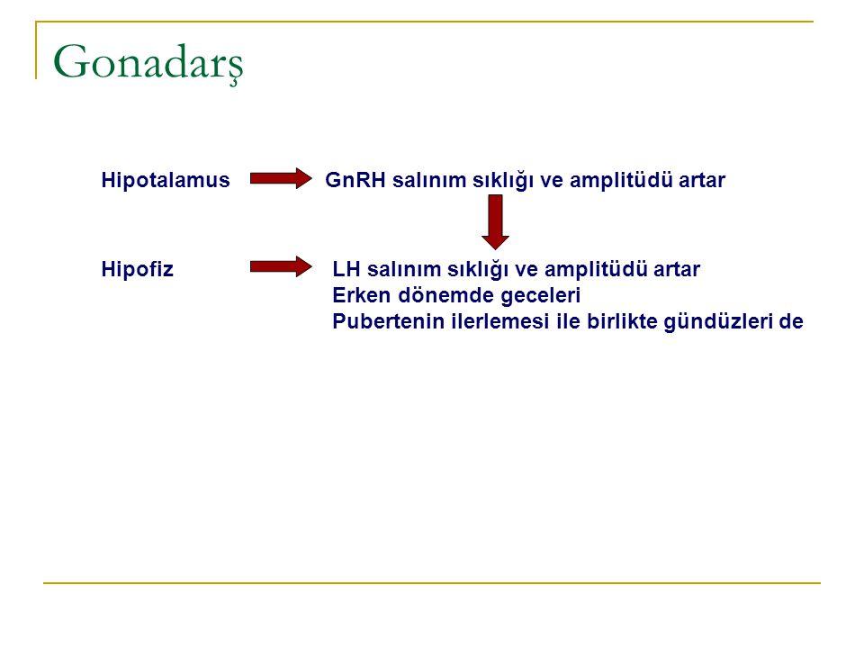 LH Leydig hücreleri testosteron Gonadarş