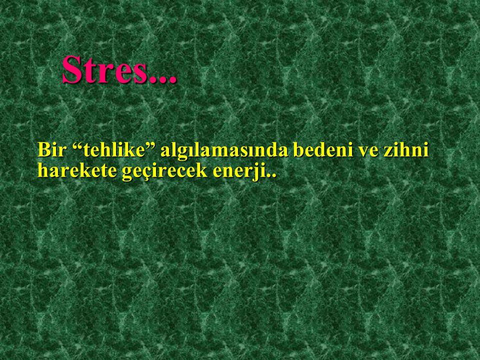 """Stres... Bir """"tehlike"""" algılamasında bedeni ve zihni harekete geçirecek enerji.."""