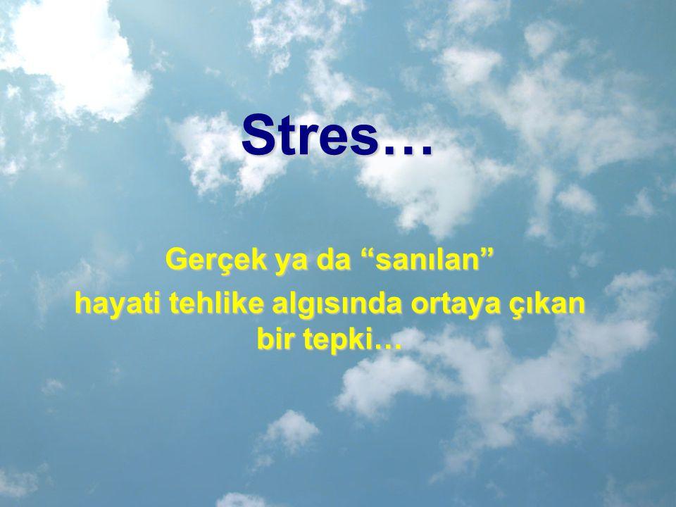 """Stres… Gerçek ya da """"sanılan"""" hayati tehlike algısında ortaya çıkan bir tepki…"""