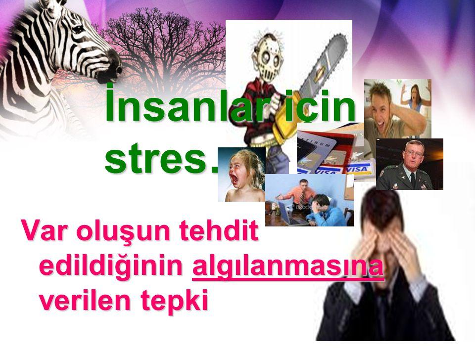 İnsanlar için stres… Var oluşun tehdit edildiğinin algılanmasına verilen tepki