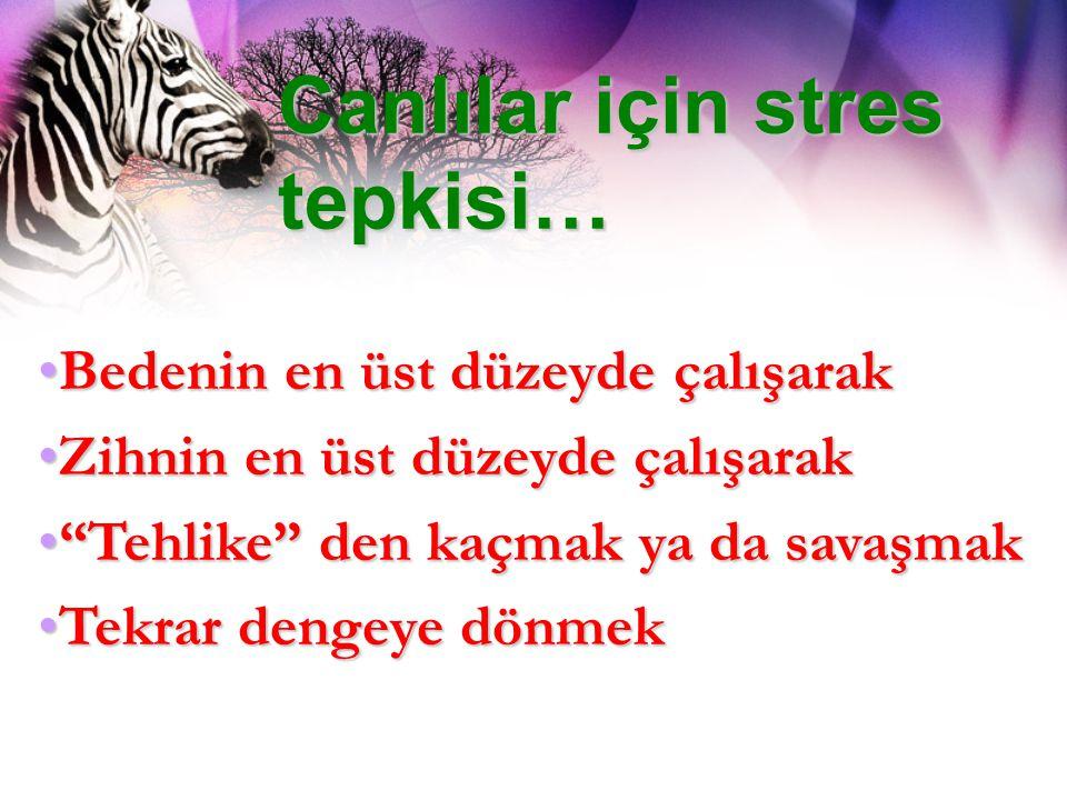 Canlılar için stres tepkisi… Bedenin en üst düzeyde çalışarakBedenin en üst düzeyde çalışarak Zihnin en üst düzeyde çalışarakZihnin en üst düzeyde çal
