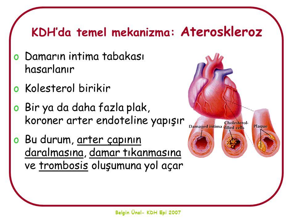 Belgin Ünal- KDH Epi 2007 KDH'da temel mekanizma: Ateroskleroz oDamarın intima tabakası hasarlanır oKolesterol birikir oBir ya da daha fazla plak, kor