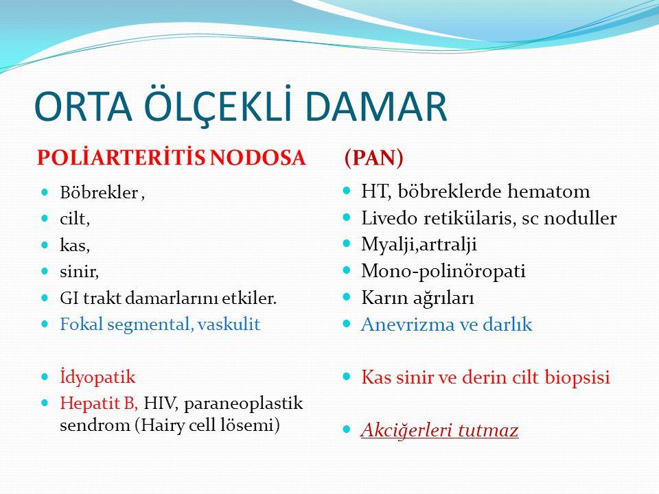 ORTA ÖLÇEKLİ DAMAR POLİARTERİTİS NODOSA (PAN) Böbrekler, cilt, kas, sinir, GI trakt damarlarını etkiler. Fokal segmental, vaskulit İdyopatik Hepatit B