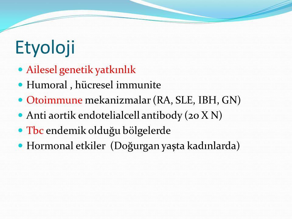 Etyoloji Ailesel genetik yatkınlık Humoral, hücresel immunite Otoimmune mekanizmalar (RA, SLE, IBH, GN) Anti aortik endotelialcell antibody (20 X N) T