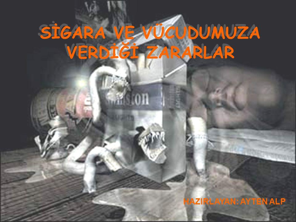 YALOVA SAĞLIK MÜDÜRLÜĞÜ EĞİTİM ŞUBESİ Dünyadaki bir çok gelişmiş ülke, vatandaşlarını Tütün dumanına maruz kalmaktan koruyan Yasaları uygulamaya koymuştur.