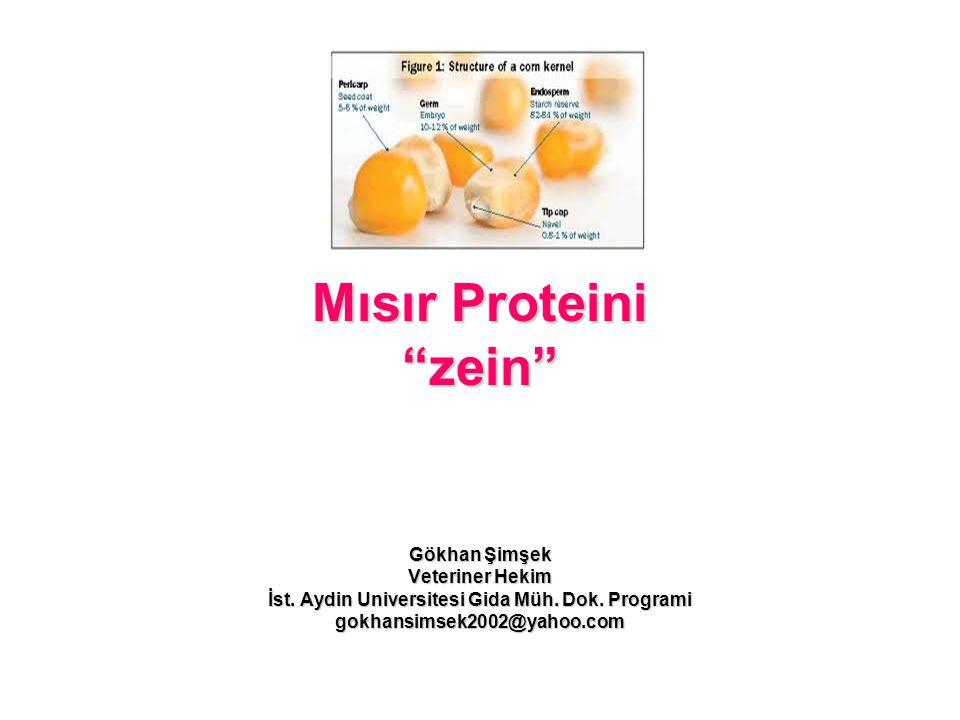 """Mısır Proteini """"zein"""" Gökhan Şimşek Veteriner Hekim İst. Aydin Universitesi Gida Müh. Dok. Programi gokhansimsek2002@yahoo.com"""