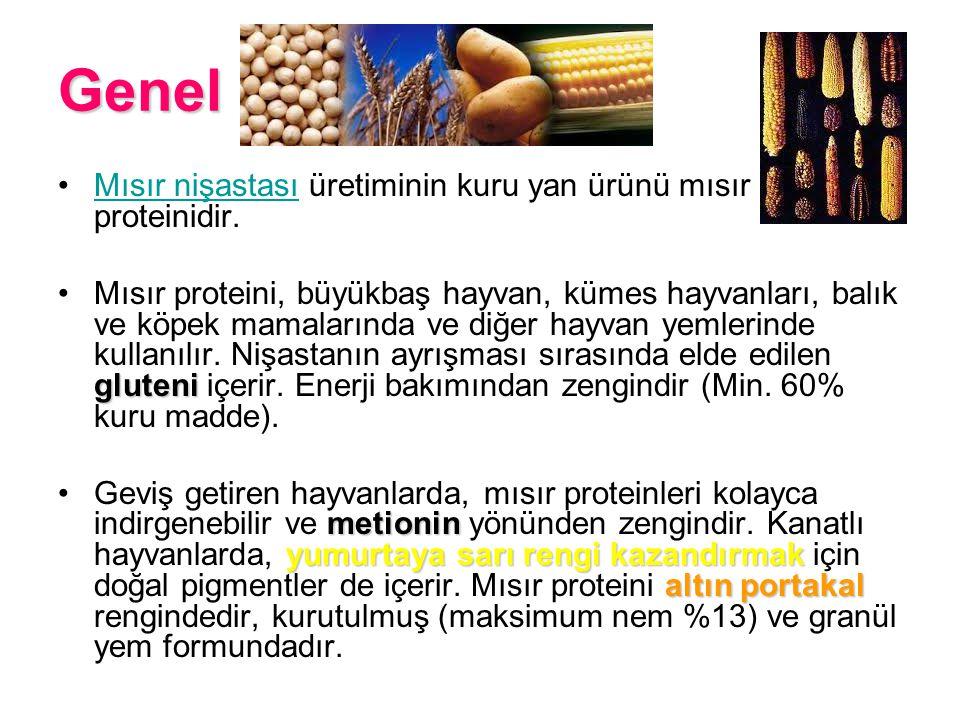 Genel Mısır nişastası üretiminin kuru yan ürünü mısır proteinidir.Mısır nişastası gluteniMısır proteini, büyükbaş hayvan, kümes hayvanları, balık ve k