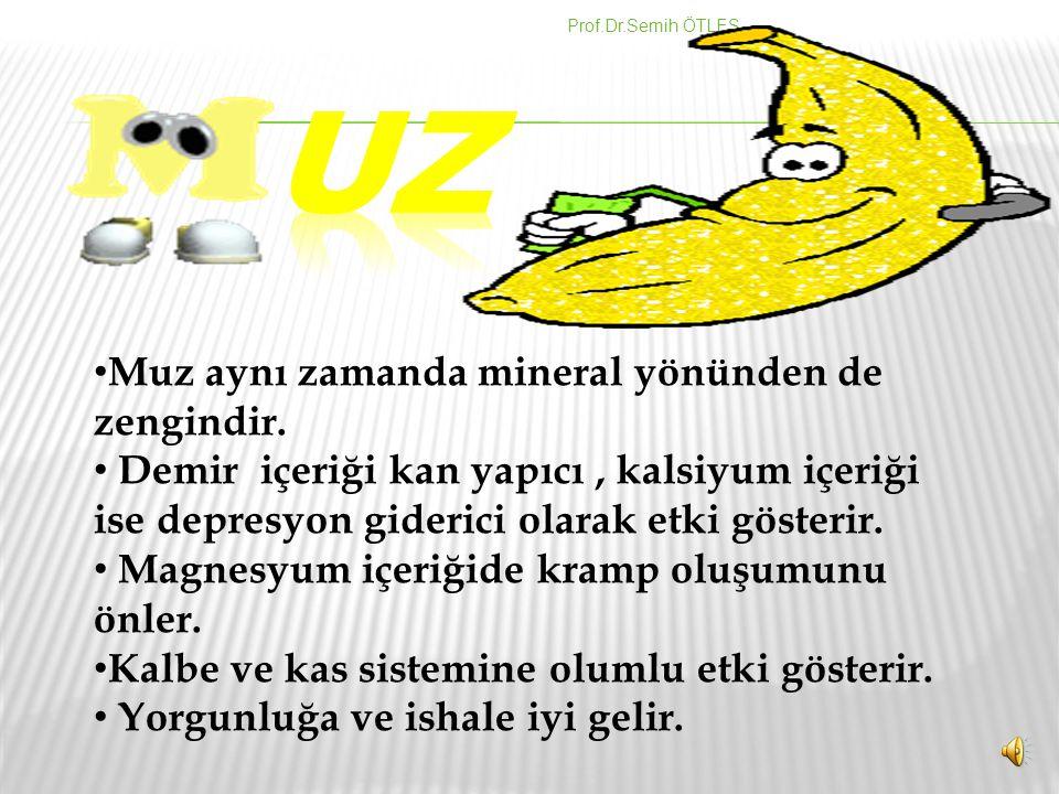 Prof.Dr.Semih ÖTLEŞ Muz aynı zamanda mineral yönünden de zengindir.