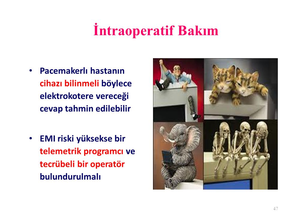 İntraoperatif Bakım Pacemakerlı hastanın cihazı bilinmeli böylece elektrokotere vereceği cevap tahmin edilebilir EMI riski yüksekse bir telemetrik programcı ve tecrübeli bir operatör bulundurulmalı 47