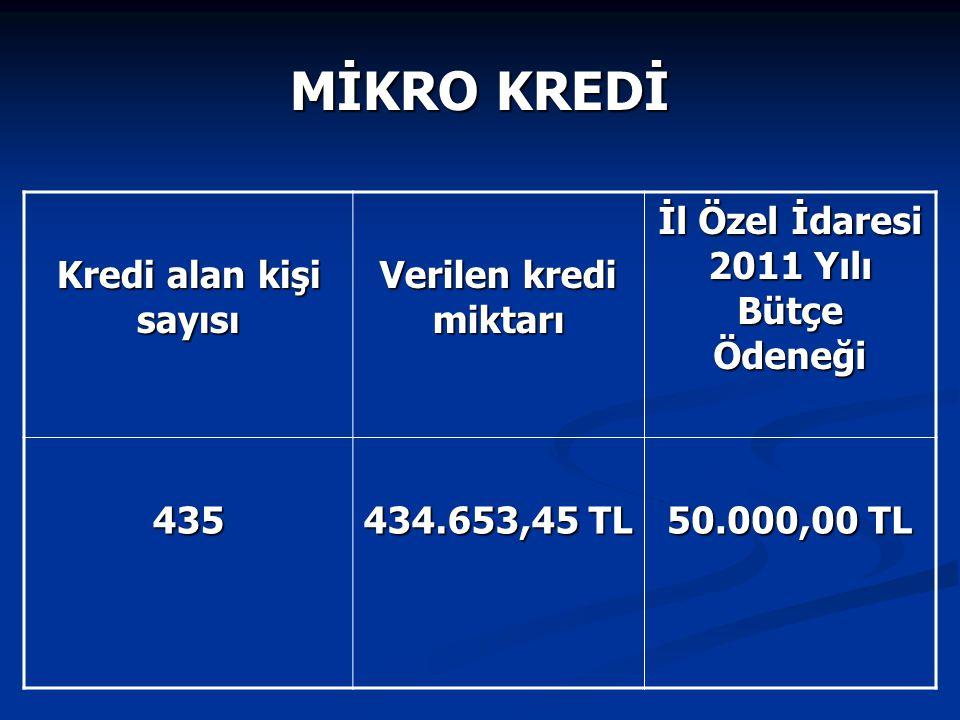 MİKRO KREDİ Kredi alan kişi sayısı Verilen kredi miktarı İl Özel İdaresi 2011 Yılı Bütçe Ödeneği 435 434.653,45 TL 50.000,00 TL