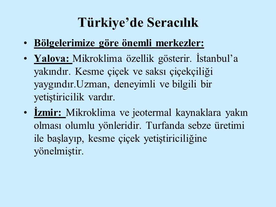 Türkiye'de Seracılık Bölgelerimize göre önemli merkezler: Yalova: Mikroklima özellik gösterir. İstanbul'a yakındır. Kesme çiçek ve saksı çiçekçiliği y
