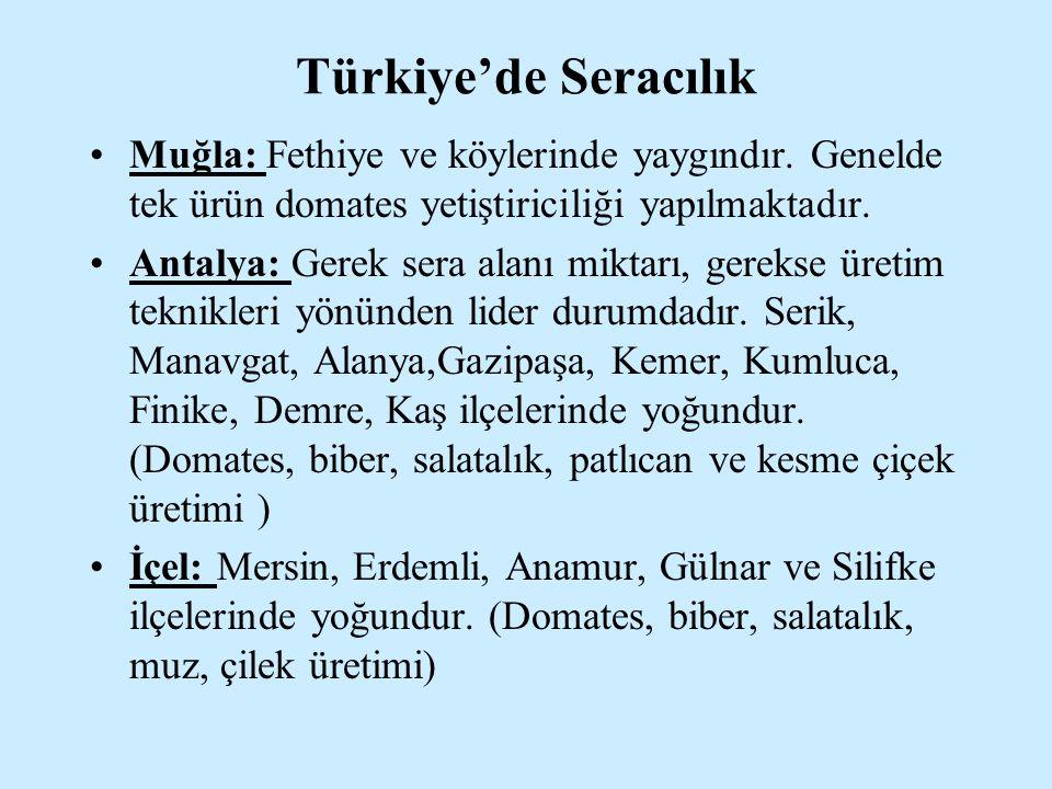 Türkiye'de Seracılık Muğla: Fethiye ve köylerinde yaygındır. Genelde tek ürün domates yetiştiriciliği yapılmaktadır. Antalya: Gerek sera alanı miktarı