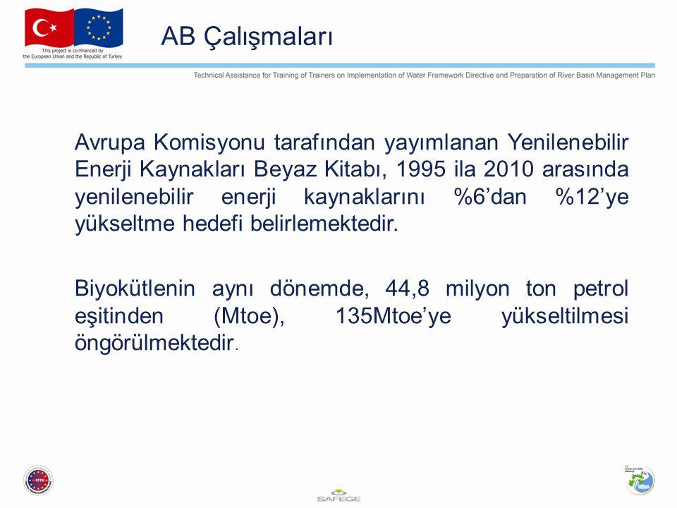 AB Çalışmaları Avrupa Komisyonu tarafından yayımlanan Yenilenebilir Enerji Kaynakları Beyaz Kitabı, 1995 ila 2010 arasında yenilenebilir enerji kaynak