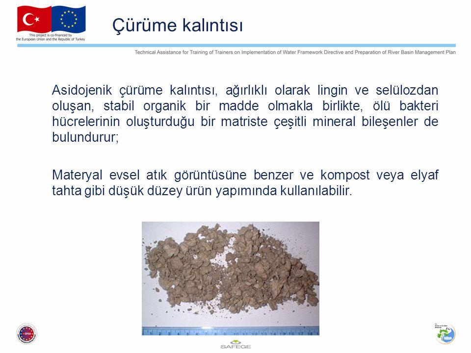 Çürüme kalıntısı Asidojenik çürüme kalıntısı, ağırlıklı olarak lingin ve selülozdan oluşan, stabil organik bir madde olmakla birlikte, ölü bakteri hüc