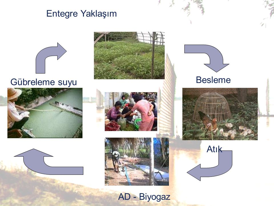 Irrigation Besleme Atık AD - Biyogaz Gübreleme suyu Entegre Yaklaşım