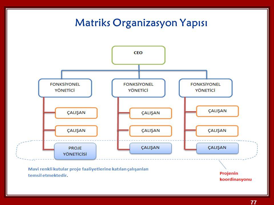 Matriks Organizasyon Yapısı 77