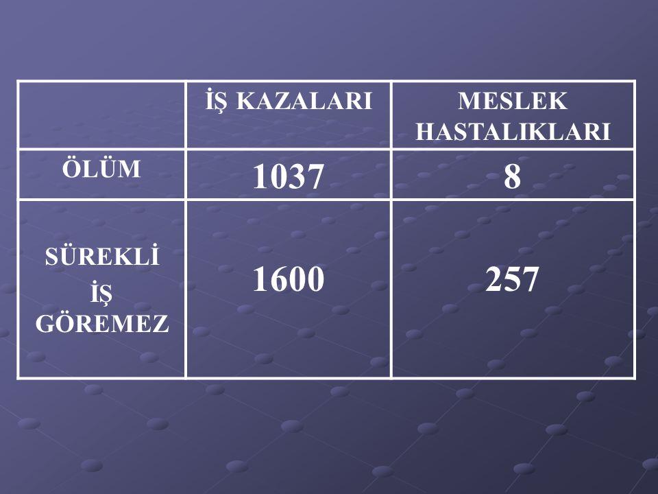 İŞ KAZALARI VE MESLEK HASTALIKLARI SONUCU YAKLAŞIK İŞ KAZALARI VE MESLEK HASTALIKLARI SONUCU YAKLAŞIK 2.000.000 İŞ GÜNÜ KAYBI 2.000.000 İŞ GÜNÜ KAYBI İŞ KAZALARI VE MESLEK HASTALIKLARININ TOPLAM MALİYETİ ; GAYRİ SAFİ MİLLİ HASILA ENDÜSTRİLEŞMİŞ ÜLKELER % 1 - % 3 % 1 - % 3 TÜRKİYE TÜRKİYE % 5 % 5