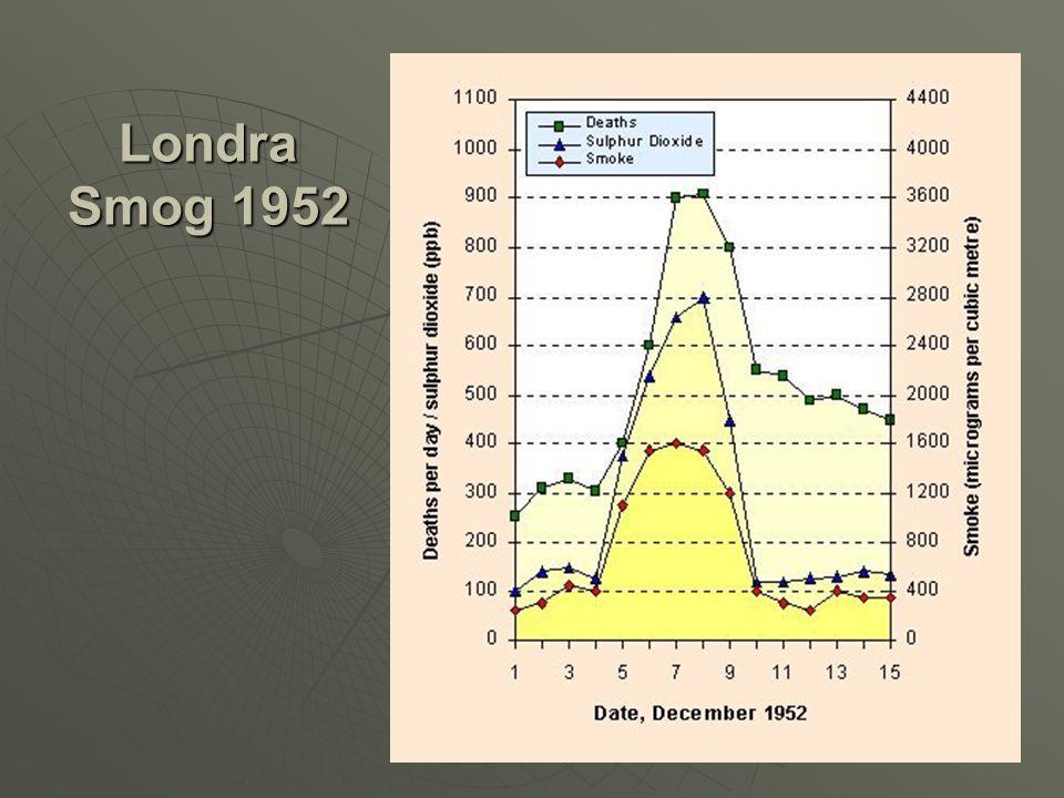 Piccadilly – Öğleden sonra 1955