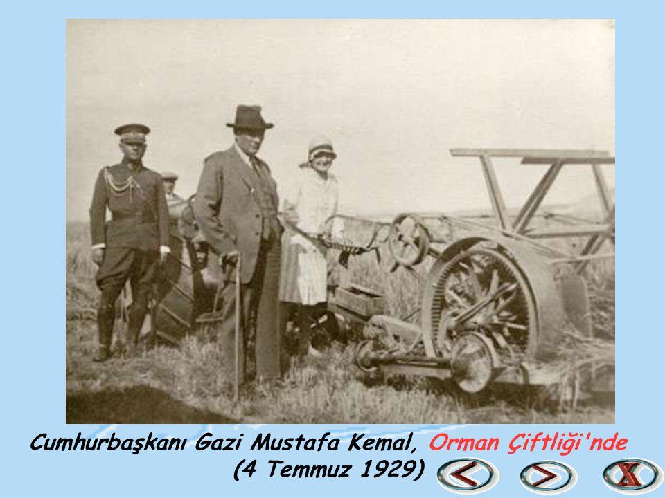 Cumhurbaşkanı Gazi Mustafa Kemal, Orman Çiftliği'nde (4 Temmuz 1929)