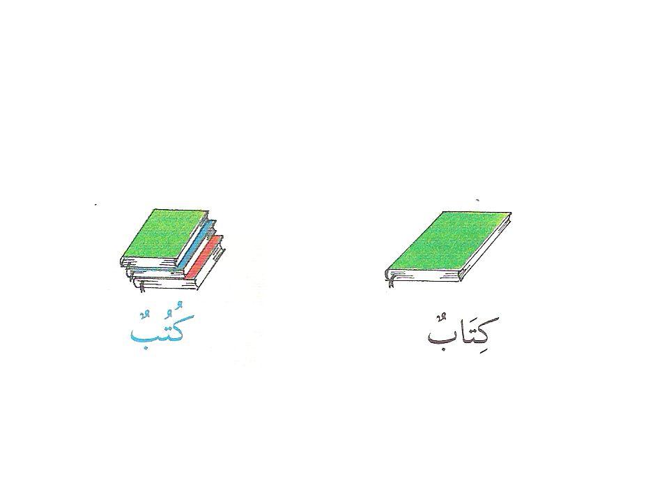 Kırık Çoğul'a Örnek بَابٌ (ج) اَبْوَابٌ Kapılar Kapı