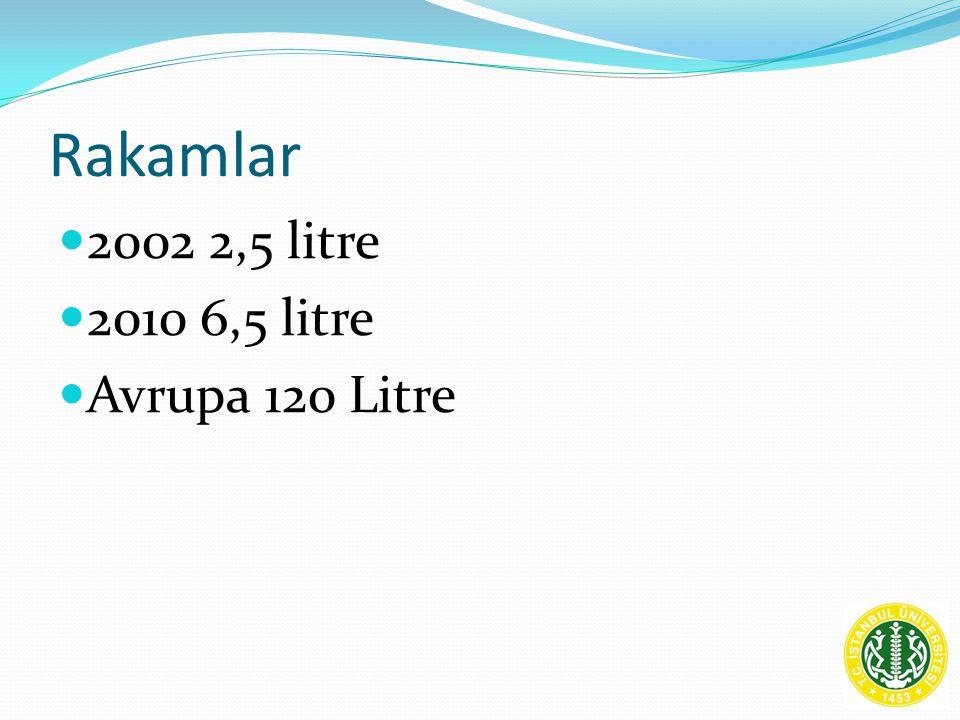Rakamlar 2002 2,5 litre 2010 6,5 litre Avrupa 120 Litre