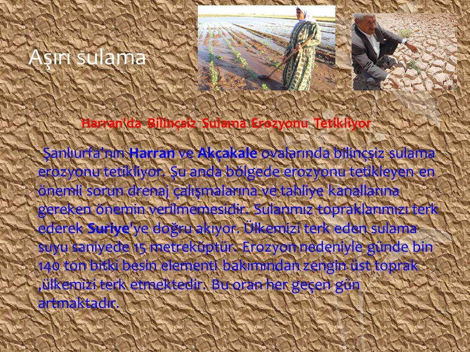 Aşırı sulama Harran'da Bilinçsiz Sulama Erozyonu Tetikliyor Şanlıurfa'nın Harran ve Akçakale ovalarında bilinçsiz sulama erozyonu tetikliyor. Şu anda